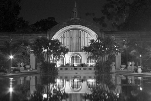 Take a trip to Balboa Park and the lovely botanical gardens.