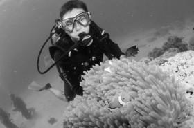Junior David Pennington scuba dives in the Great Barrier Reef in Australia.