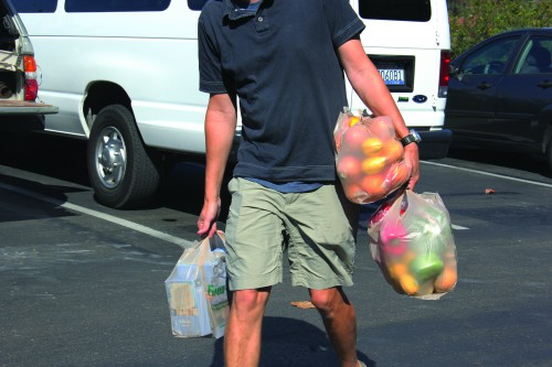 A new California law will ban plastic bags at grocery stores.