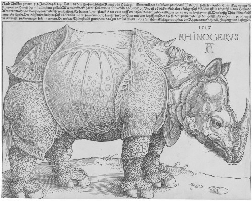 "Photos Courtesy of The British Museum Stop by the Hoehn Family Galleries and see the print of the world-famous ""Dürer's Rhinoceros."""